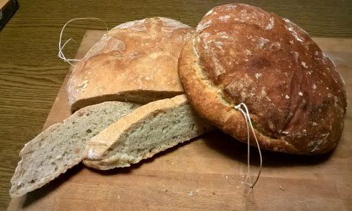 Il pane degli antichi Romani