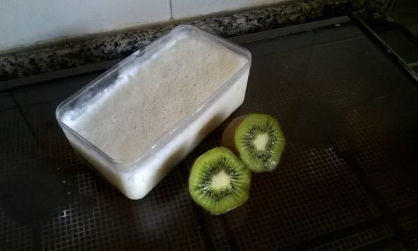 Gelée di yogurt e crema di kiwi