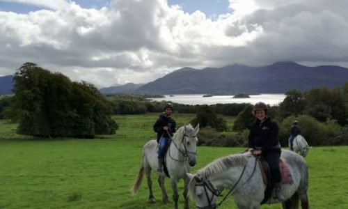 Giorno 7 – Killarney National Park