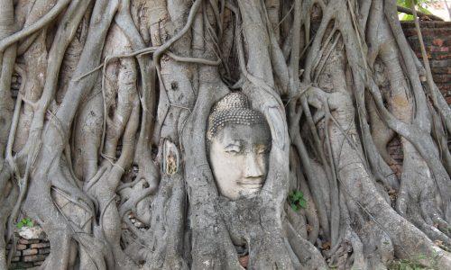 Un giorno ad Ayutthaya – L'antica capitale del Regno del Siam