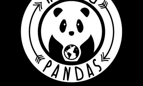 La nostra intervista con Rolling Pandas!